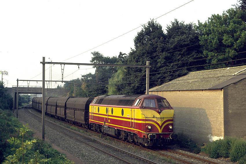 http://derschreier.de/Fotos/Bild3.jpg